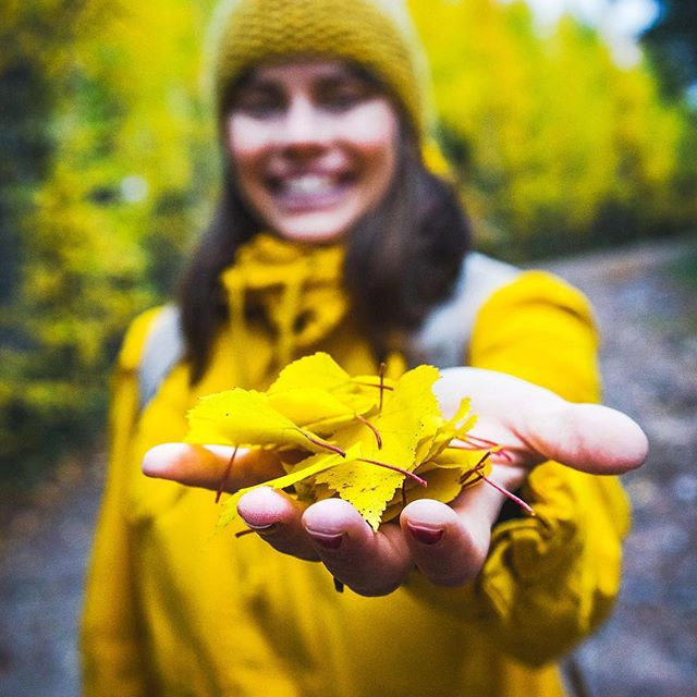 Digging some gold. 🍁#autumnvibes #visitrovaniemi