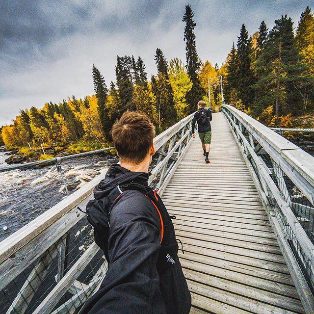 Sunday run in autumn forest 👌🏽🍁#trailrunning #suomi100