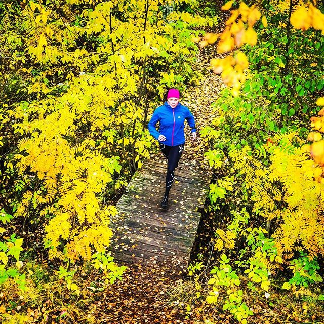 Fifty shades of yellow and a happy runner 🤘🏼🍂 #trailrunning