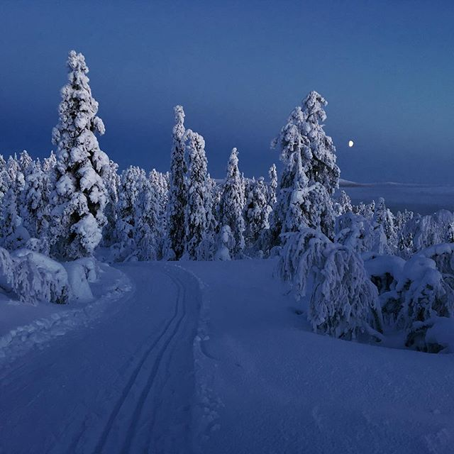 Hey, it's us, still here on Instagram but recently more xc-skiing in moonlight✨Nature is insanely beautiful up here in Muonio, Lapland. There's no light pollution and we're surrounded by total silence. Couldn't have asked for more for this Christmas and NY 🌝