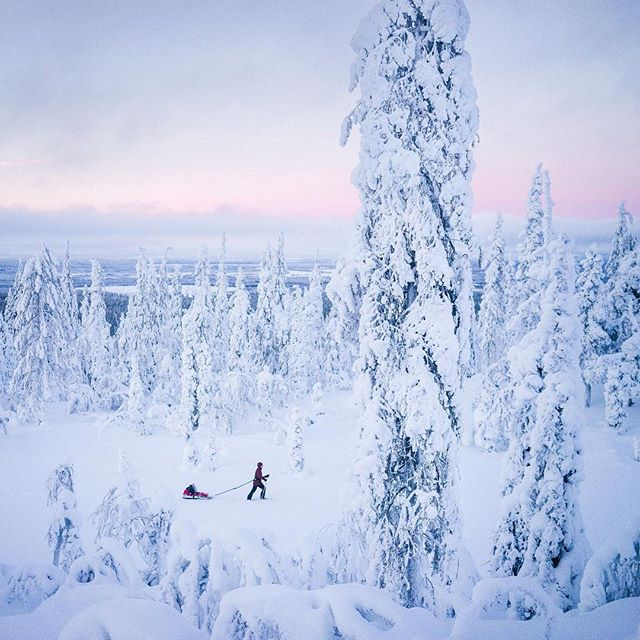 Father and son quality time somewhere around Olostunturi, Muonio, Lapland. The view was the most beautiful we know, happy to introduce this to our offspring ✨