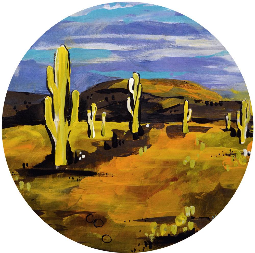 Sonoran Desert | Phoenix, AZ
