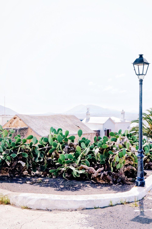 Whitewashed village of Teguise