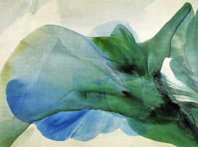 Phenomena Kwan Yin by Paul Jenkins