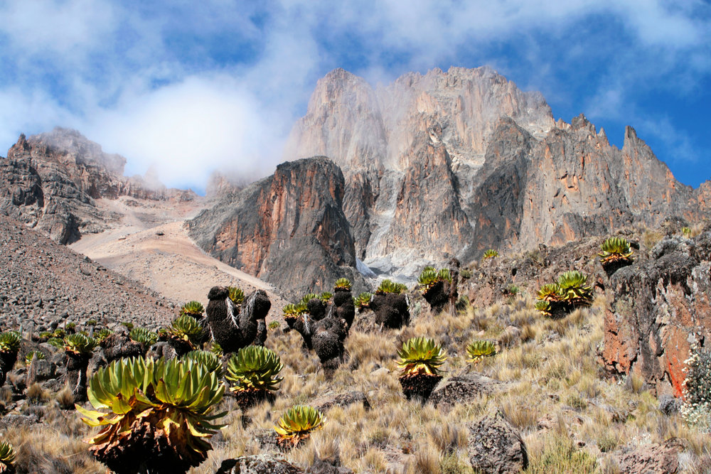 Mount-Kenya.jpeg