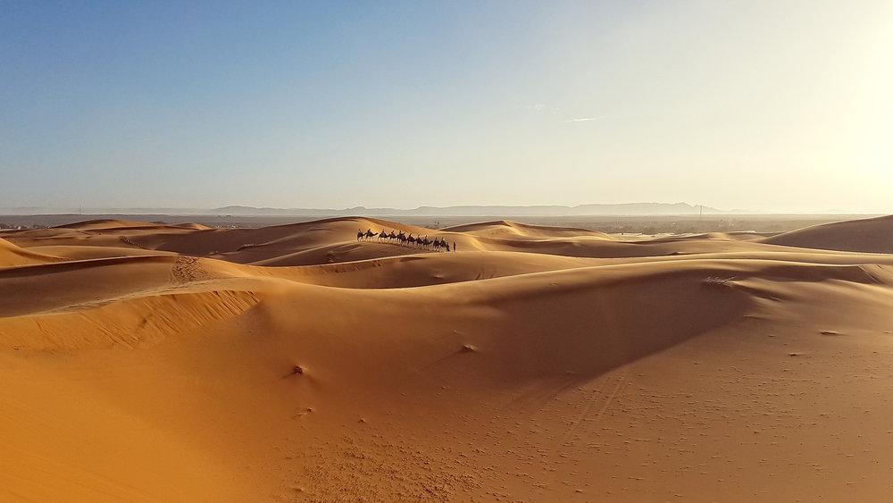 desert-landscape-scenery-morocco.jpg