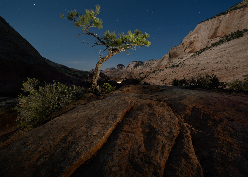 Zion National Park. ISO 800, f/5, 60 seconds. 14-24mm 2.8  Nikon  lens, Nikon D4,  Coast  flashlight.