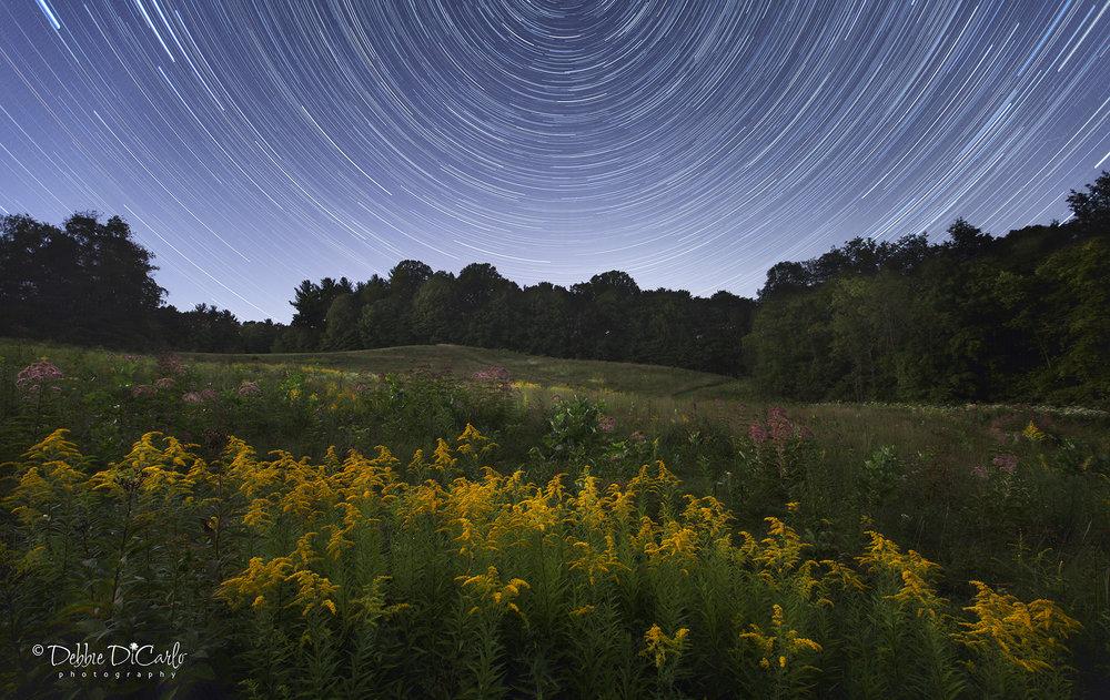 Kendall Hills Under the Stars.jpg