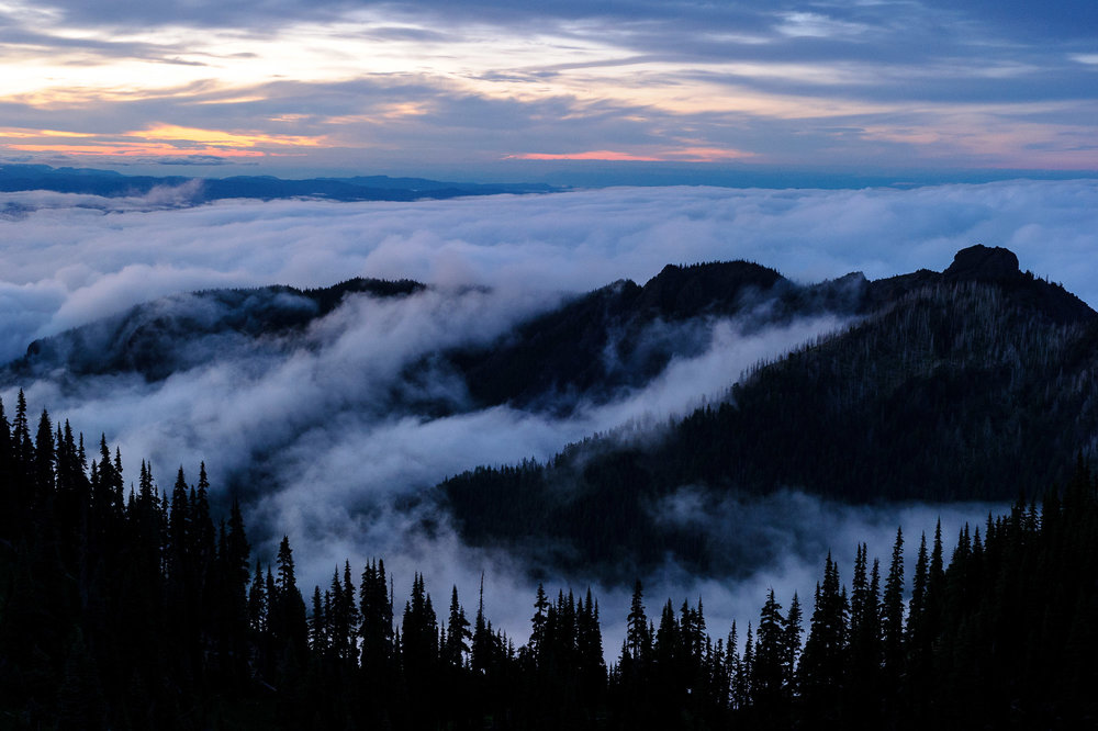 Who wouldn't want to help protect a view over heaven?  Olympic National Park , © 2016 Chris Nicholson.
