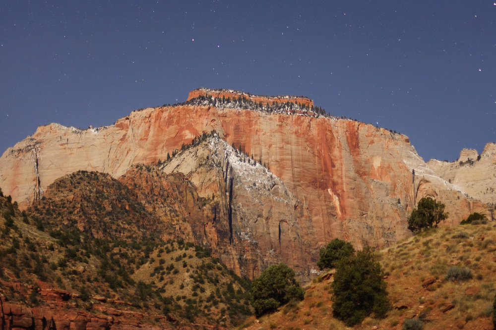 Low-contrast scene illuminated by the full moon, in Zion National Park.