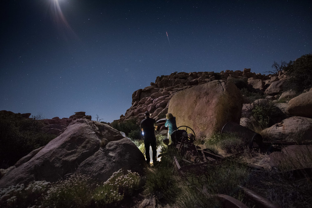 Collaborating in Joshua Tree National Park. Photos by Susan Wales.