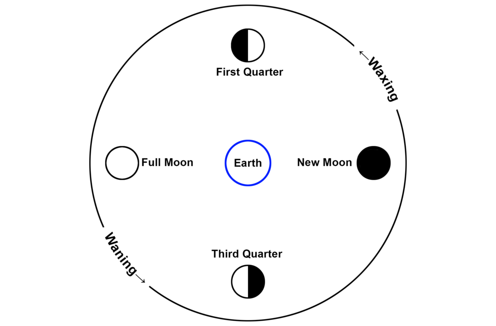 it takes roughly one month for the moon to complete the full cycle from new  to full and back to new  this means there is roughly one week between each  full