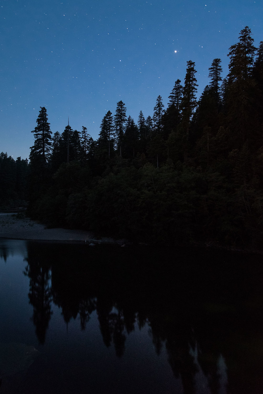 Redwood-10.jpg