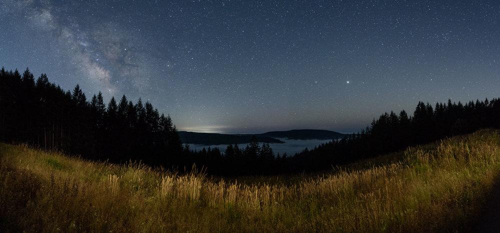 Redwood-15.jpg