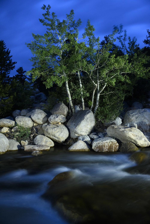Rocky Mountain_Nicholson__CS73527.jpg