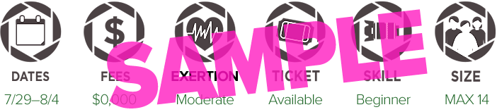 SAMPLE-icons-header-sample.png