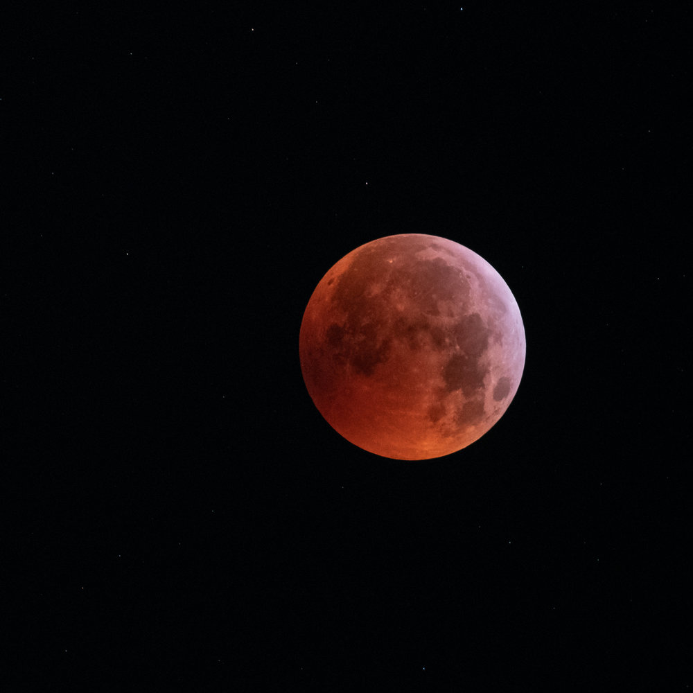 That big ol' blood moon, 2019.