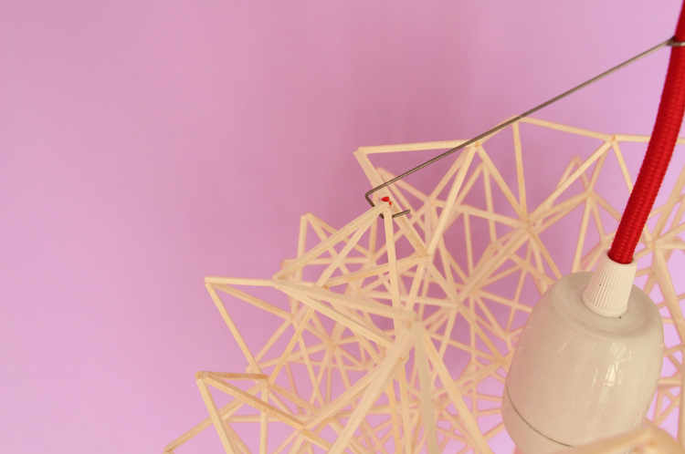 Andromède violet détail.jpg
