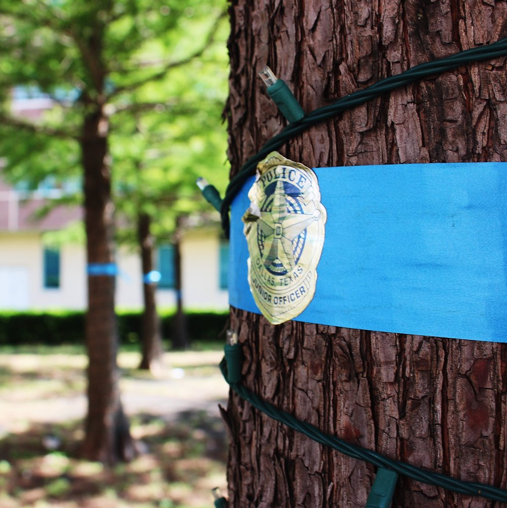 Blue ribbons surround every tree on DPD property.