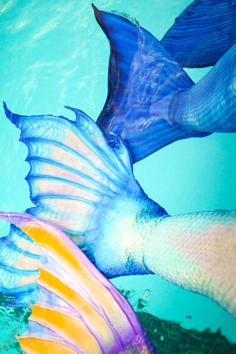 Mermaid tails!