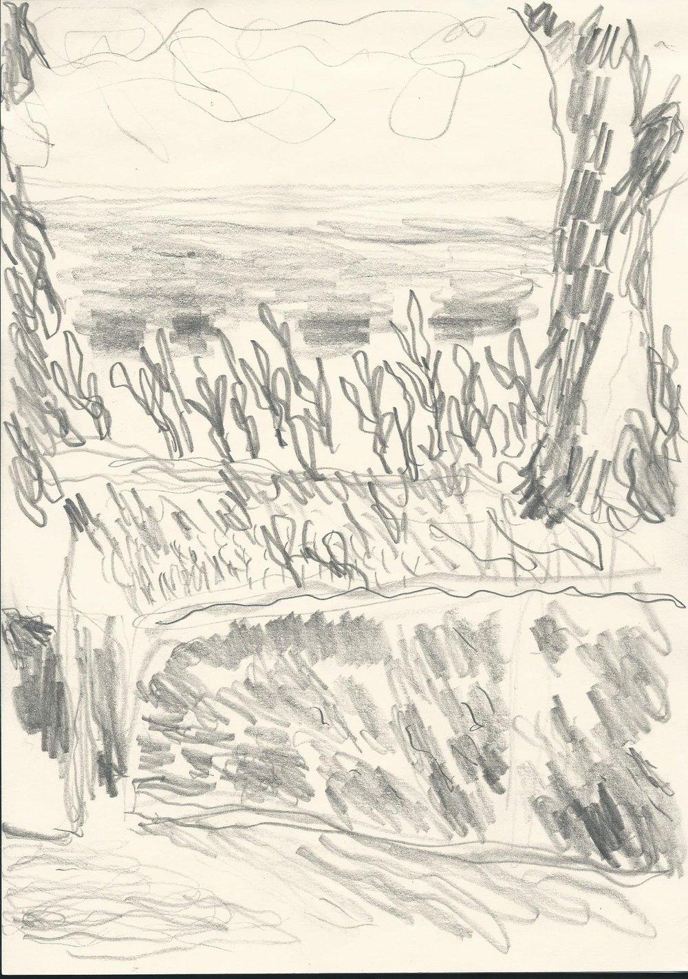 Blyant på papir (29,7 x 21cm) 2017