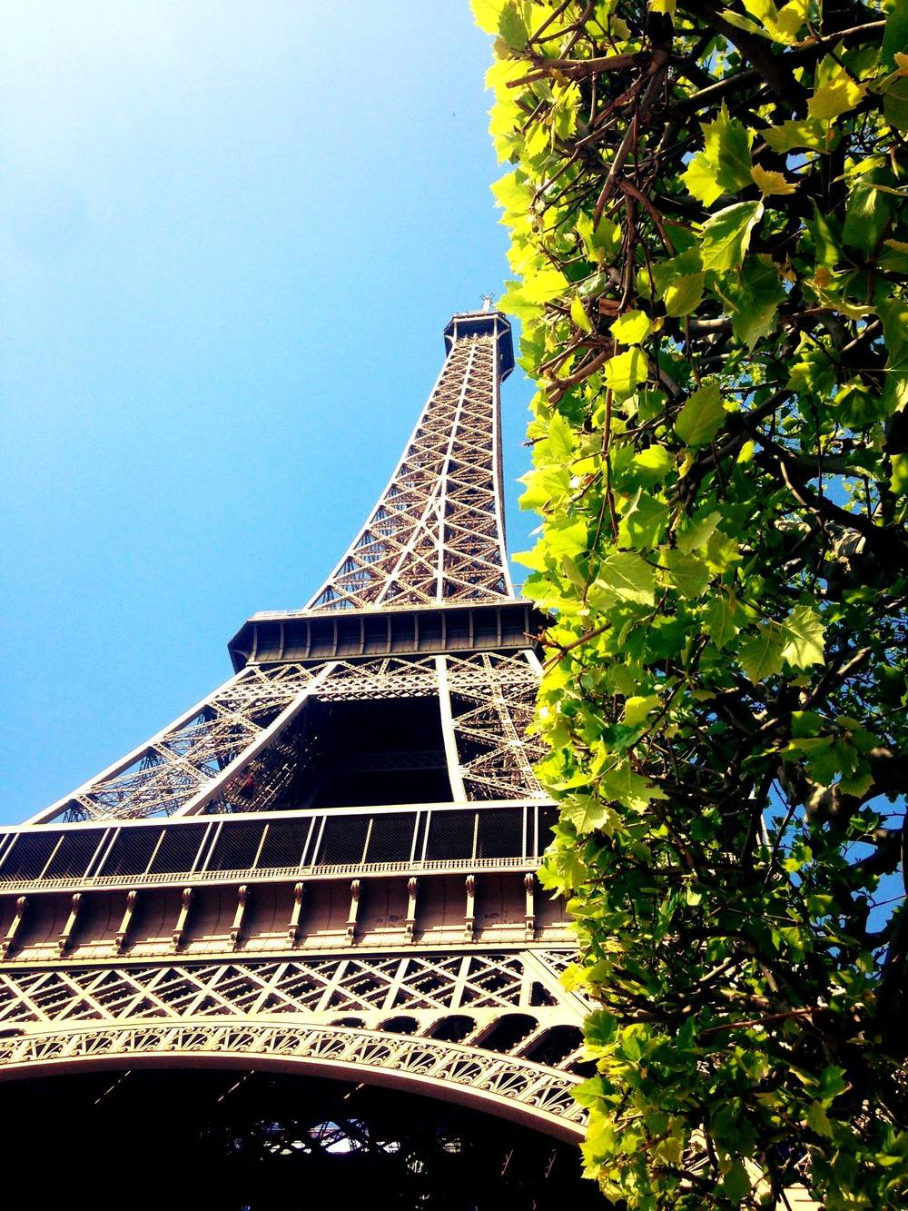 The Eiffel Tower     Paris, France    April 2014    Photographed by  Lina Abisoghomyan