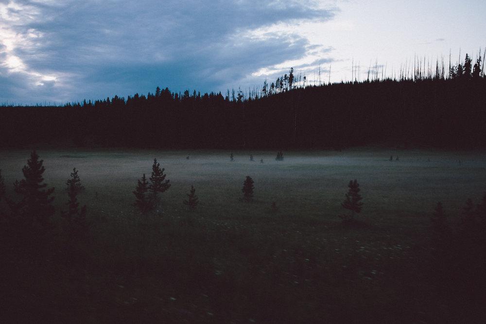 foggy_yellowstone-1.jpg