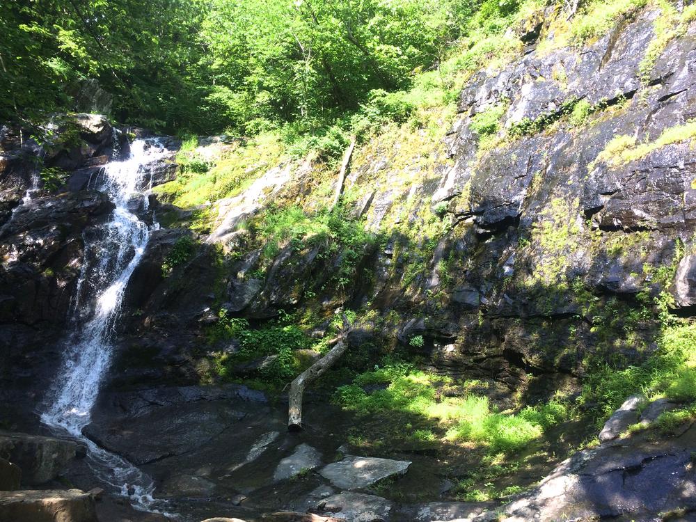 Jones Run Waterfall