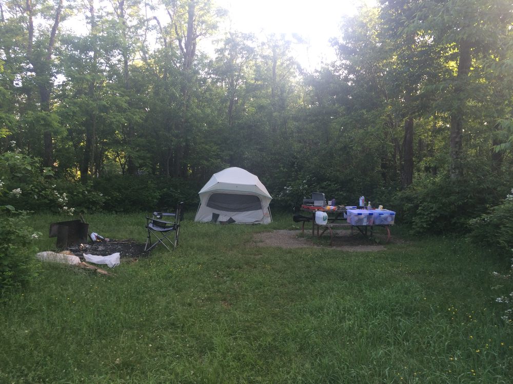 Loft Mountain Campground, Spot D91 - she was a good little joint.