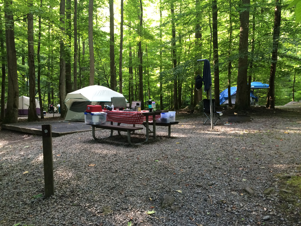 Big Creek Campground, Site 9