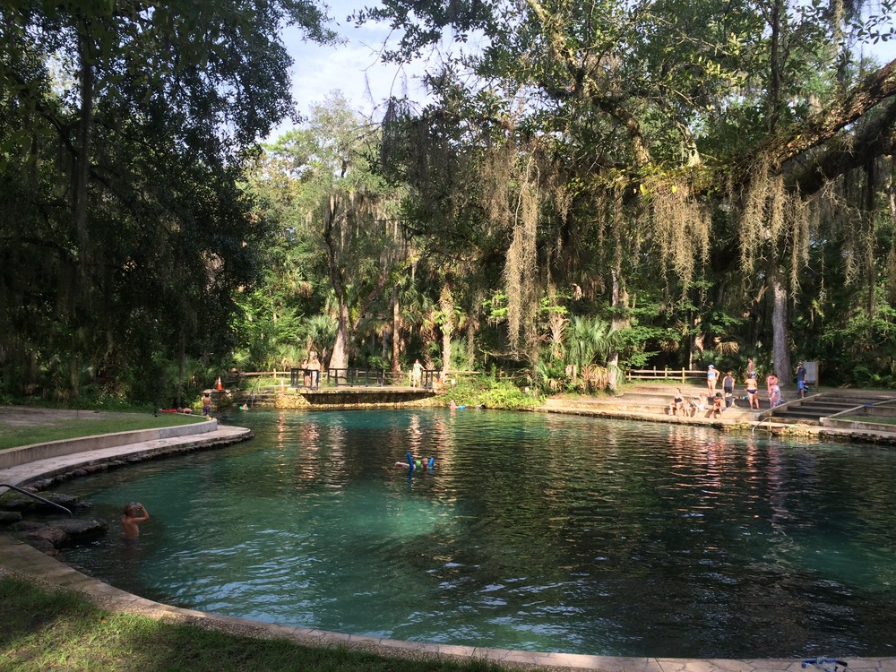 Juniper Springs - also already up on Instagram, but y'all needed a visual accompaniment with these words