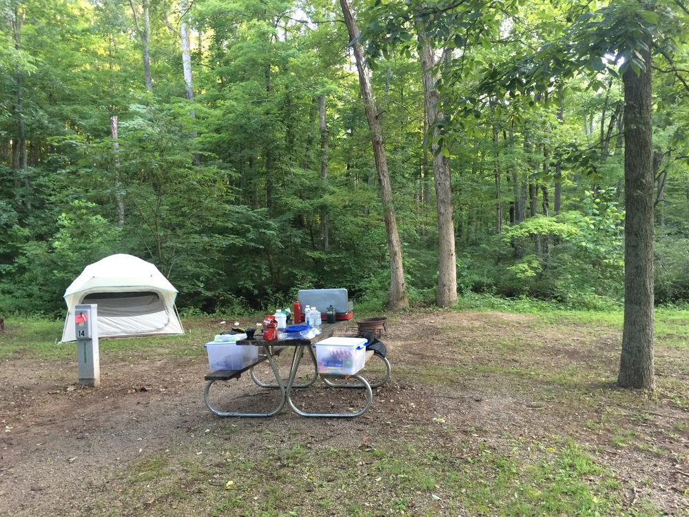 My campsite at Scioto Trail Campground-  Chillicothe, Ohio