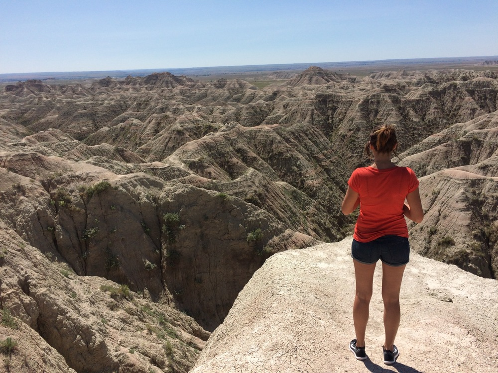 Erica amongst the Badlands