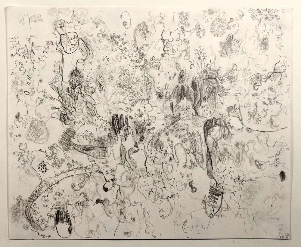 Untitled (3-19-13.1)