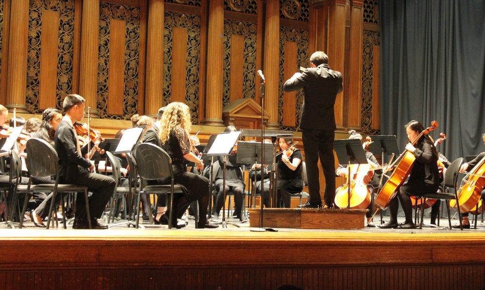 NVYS orchestra.jpg