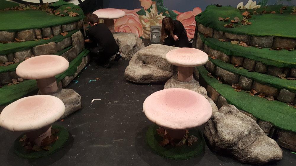 Mushrooms and Rocks