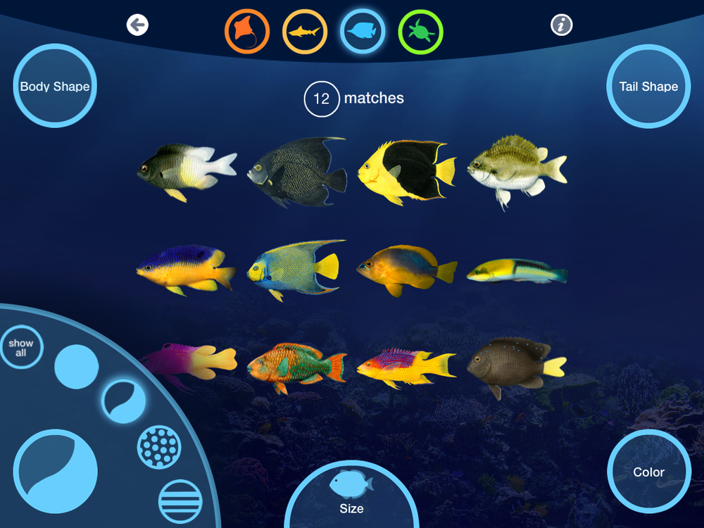 Fish ID App (FableVision Studios and NEAQ)
