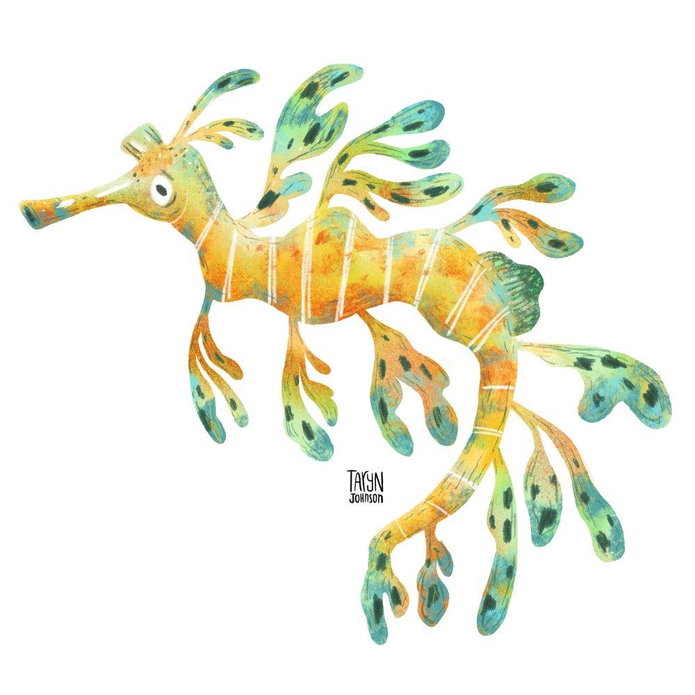 17/100 a leafy seadragon