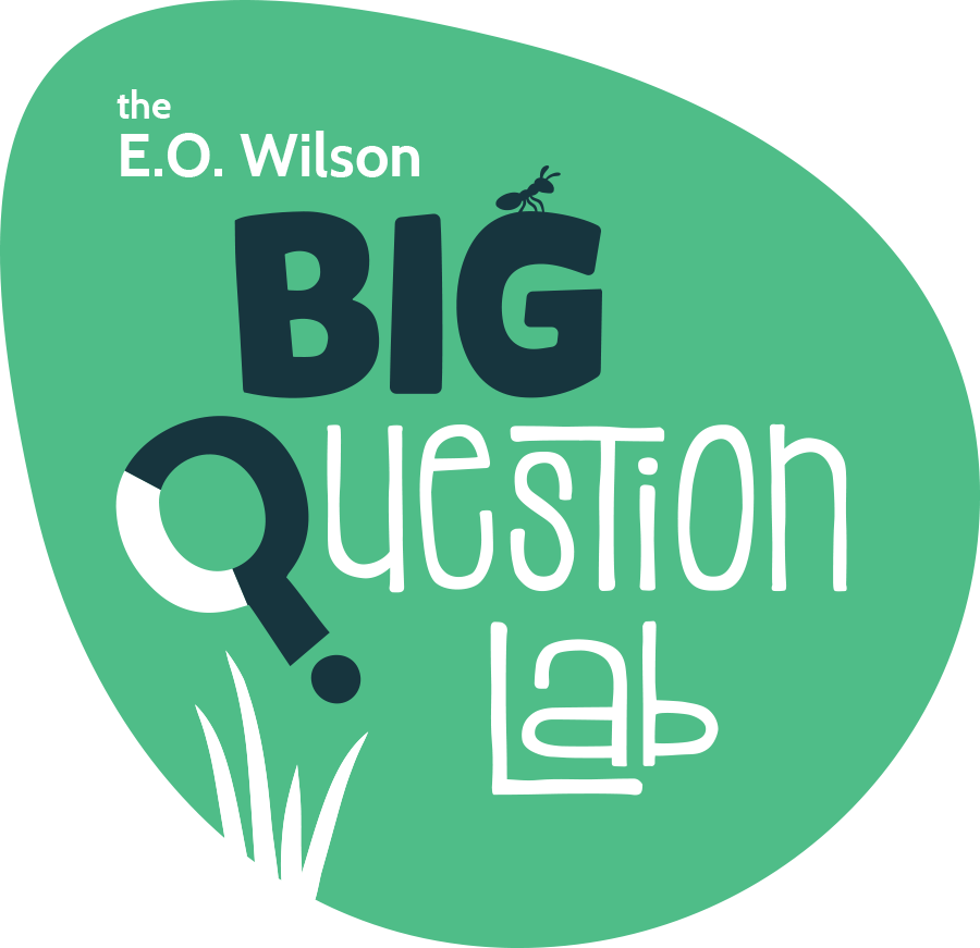Logo Design - The E.O.Wilson Big Question Lab& The Humanist Hub