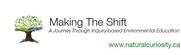 Making_The_Shift1351614223.jpg