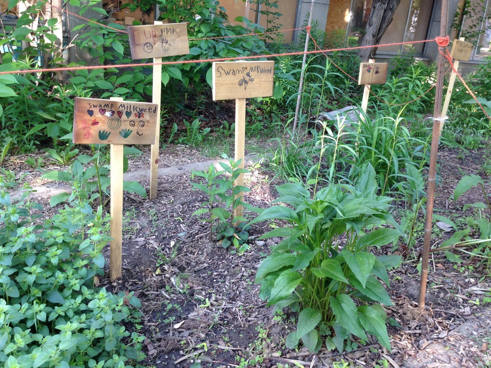 Our school's butterfly garden with student-created signs and fence