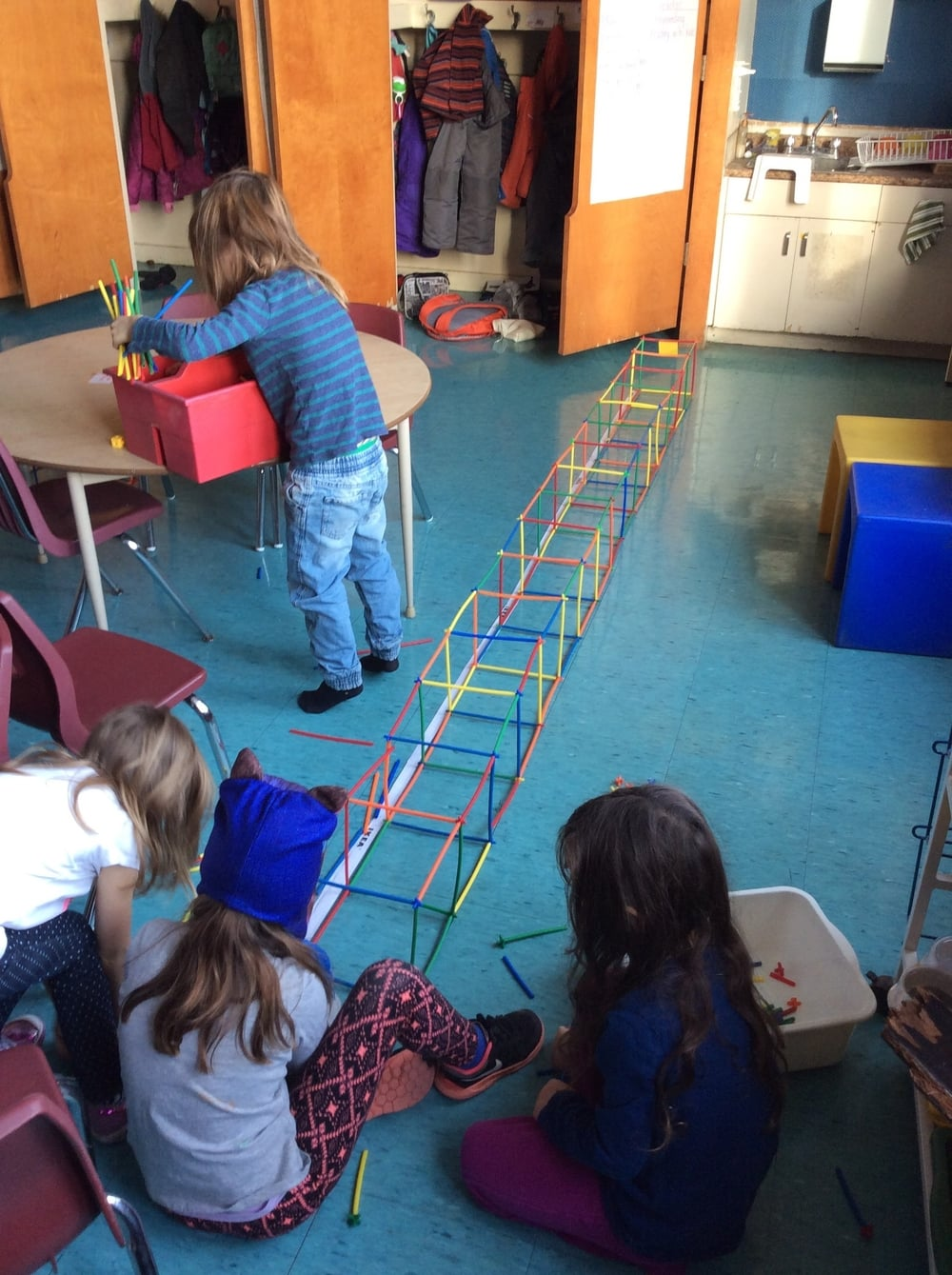 "On another day, a different group of students measured the length of a female elephant seal (350cm) then built a three-dimensional structure of the same length. While on a gallery walk, one of these students commented ""When we were building our seal, I thought it was really big. But when I saw the male elephant seal (600cm), then I thought that one was even bigger."""