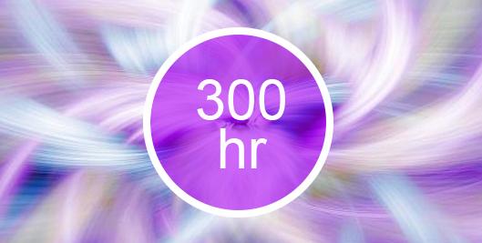 300hr-button.jpg