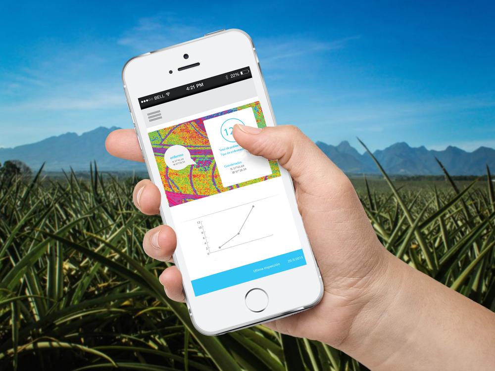 IndigoIA: Plataforma inteligente para administrar datos e imágenes agrícolas