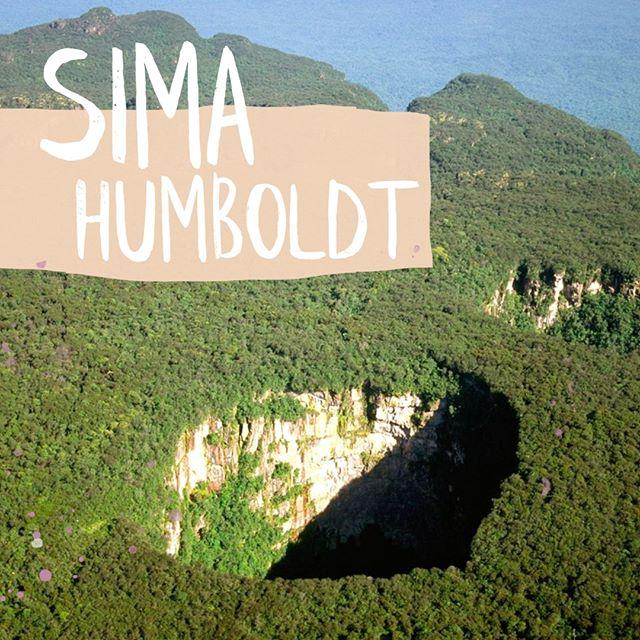 En el estado #Bolívar de nuestra #Venezuela hay un lugar asombroso, conocido como la #CuevaSimaHumboldt. Es considerado como el abismo más grande del mundo; un sumidero o cueva enorme situada en la meseta del tepuy #Sarisariñama, en el Parque Nacional Jaua-Sarisariñama. ⠀⠀⠀⠀⠀⠀⠀⠀⠀ Éste fue descubierto en 1961, ya que se encuentra en un lugar apartado y aislado, en el medio de la jungla. Su cima está cubierta de selva, y está rodeado de cuevas similares en el mismo tepuy. Se cree que son las cuevas más antiguas del mundo, y toda la biodiversidad de su interior aún se está estudiando.⠀⠀⠀⠀⠀⠀⠀⠀⠀ ¿Lo sabías? ⠀⠀⠀⠀⠀⠀⠀⠀⠀ ⠀⠀⠀⠀⠀⠀⠀⠀⠀ ⠀⠀⠀⠀⠀⠀⠀⠀⠀ ⠀⠀⠀⠀⠀⠀⠀⠀⠀ ⠀⠀⠀⠀⠀⠀⠀⠀⠀ ⠀⠀⠀⠀⠀⠀⠀⠀⠀ ⠀⠀⠀⠀⠀⠀⠀⠀⠀ #venezuelan #venezuelalibre #venezuelalucha #llevotuluzytuaromaenmipiel #venezolanosenelmundo  #roraima #tepuy #VenezuelaTeQuiero #venezuelacreativa #venezobadass #llevotuluz #Venezuelanmodel #venezuelandesigners #venezolana #venezueladesign #venezuelafood #venezuelafit #venezuelateamo #venezuelandesign #venezuelafotos #venezuelatattoo #venezuelanblogger #VenezuelaQuiereCambio #VenezuelaEmprende