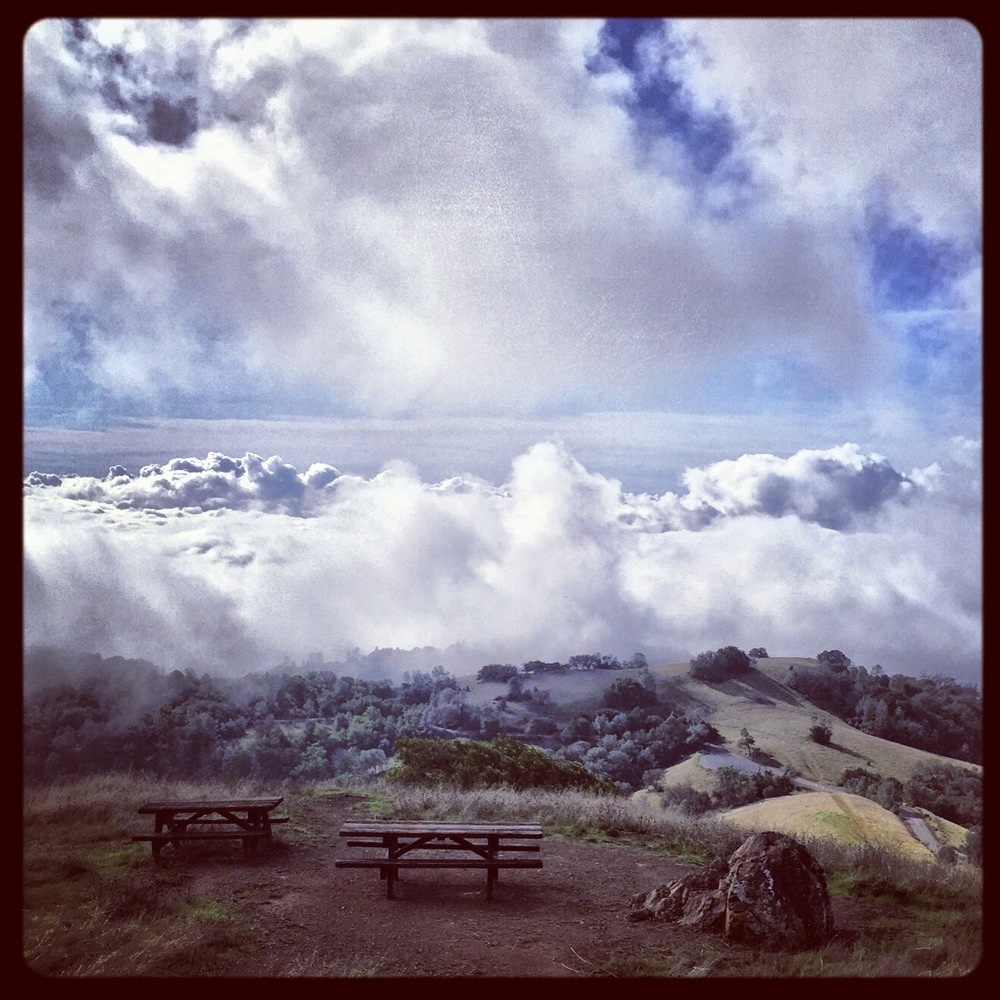 View from today's Mt. Diablo climb. I was too busy pedaling my bike!                                 Photo cred: Brad Rank