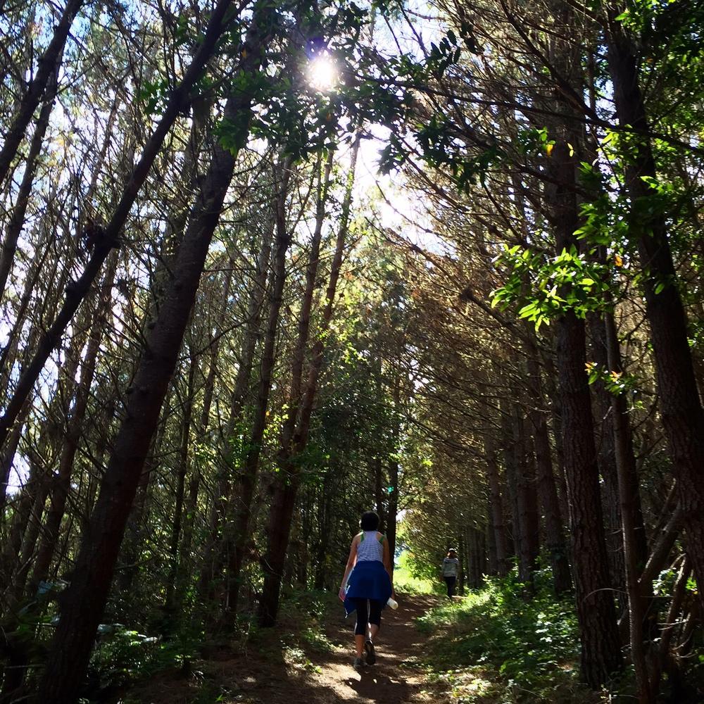 Perth Trail, Inverness