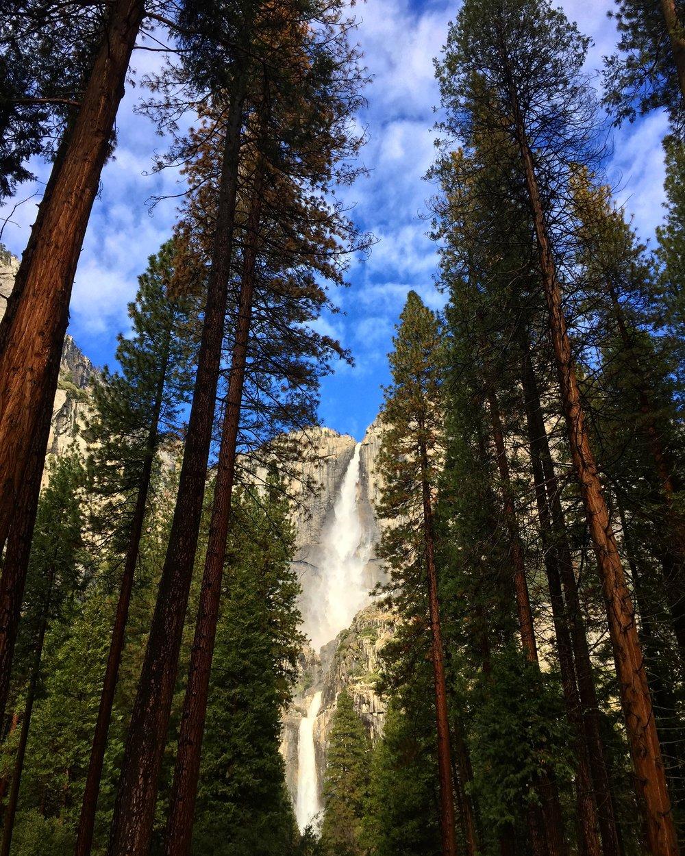 Upper and Lower Yosemite Falls, Yosemite National Park