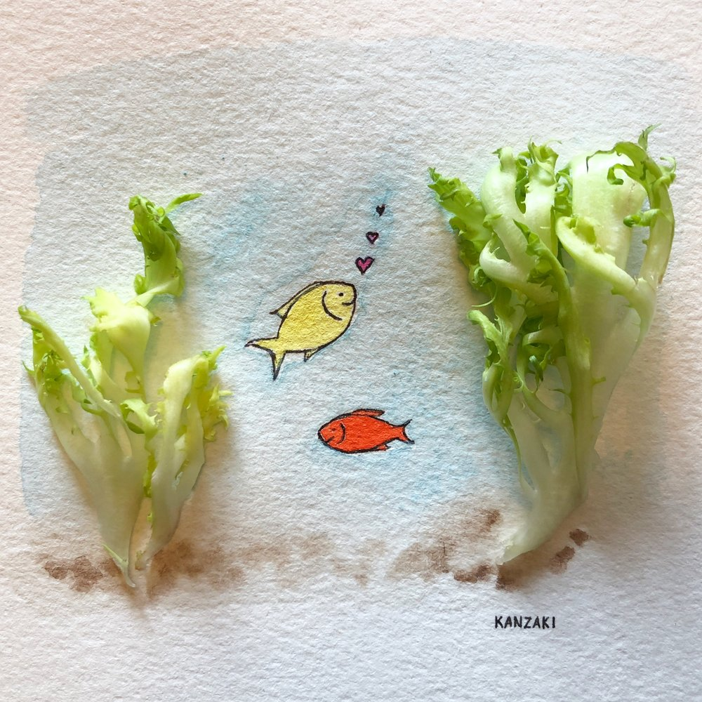 Lettuce be aware of our thoughts and environment. Are you swimming in feelings of self-doubt, anxiety or fear? Or are you swimming in acceptance, self-love, and growth? Sometimes it comes down to a simple reframe. Use your fins wisely and swim to the environment that best supports you. #100daysofthekanzakimethodfood #Day16of100