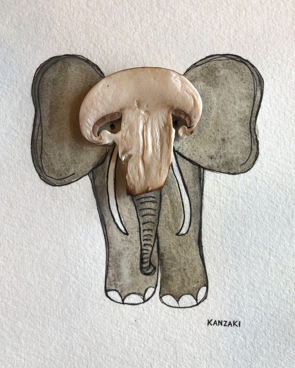 The elephant inspiration hit me as I was slicing mushrooms. This project is training my eye to recognize the magic in the ordinary- which I'm certain is a skill that can transfer to other areas of work and writing and projects.... #100daysofthekanzakimethodfood #Day15of100